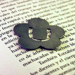 Marcalibro flor Daisy